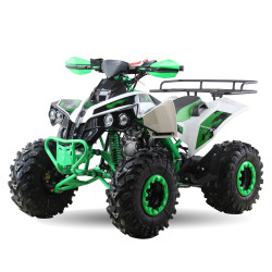 ATV - Raptor II 125 ccm 3+1 2020