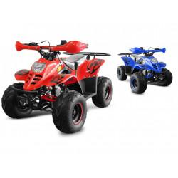 Čtyřkolka pro děti, RAPTOR 125 ccm