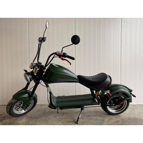 Lera Scooters C5 2000W Green