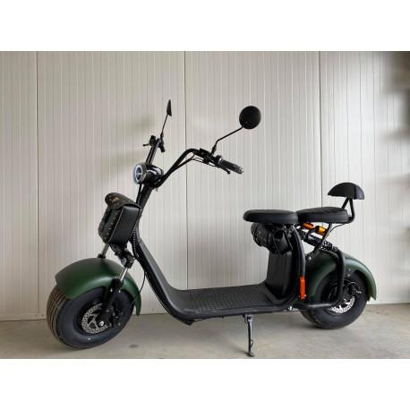 Elektrokoloběžka Lera Scooters C1 1000W zelená