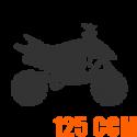 Dětské čtyřkolky - 125 ccm